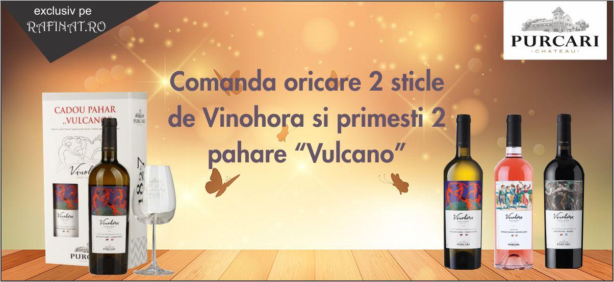 vinohora1